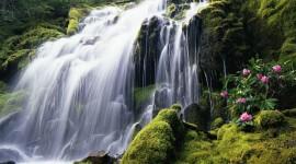 Waterfall Wide wallpaper