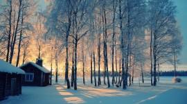 Winter For desktop