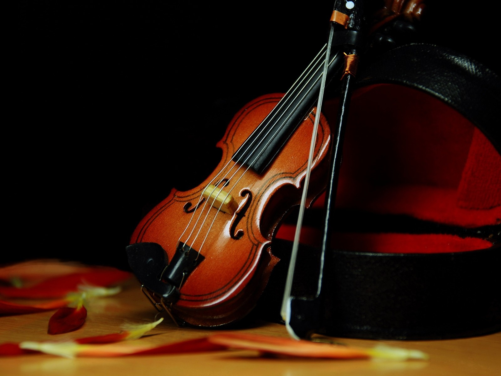 Cello Wallpaper Photo 22287 Hd Pictures: Violin Wallpapers High Quality