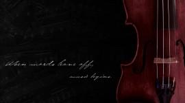 Violin Pics