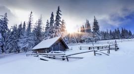 Winter Free download