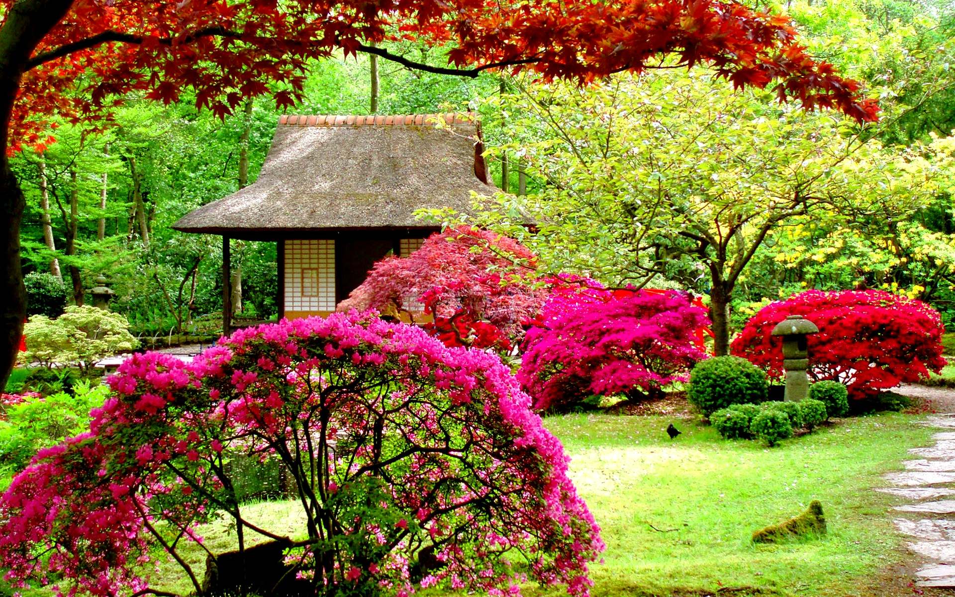Beautiful Garden Pictures Houses: Garden Wallpapers High Quality