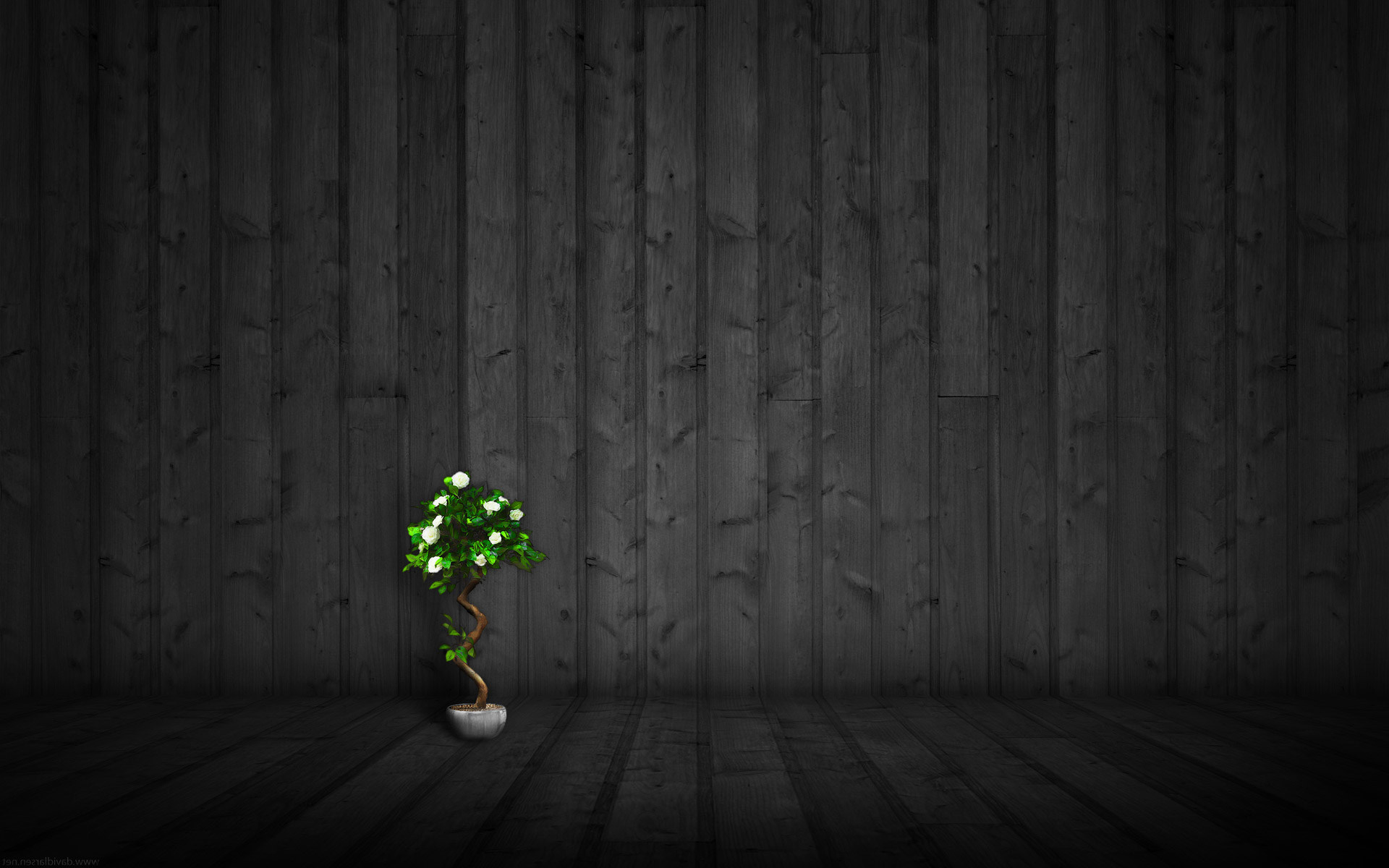 . Black Wood Wallpapers High Quality   Download Free