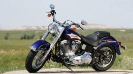 Harley Davidson Images