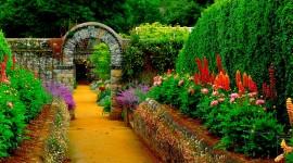 Garden High resolution