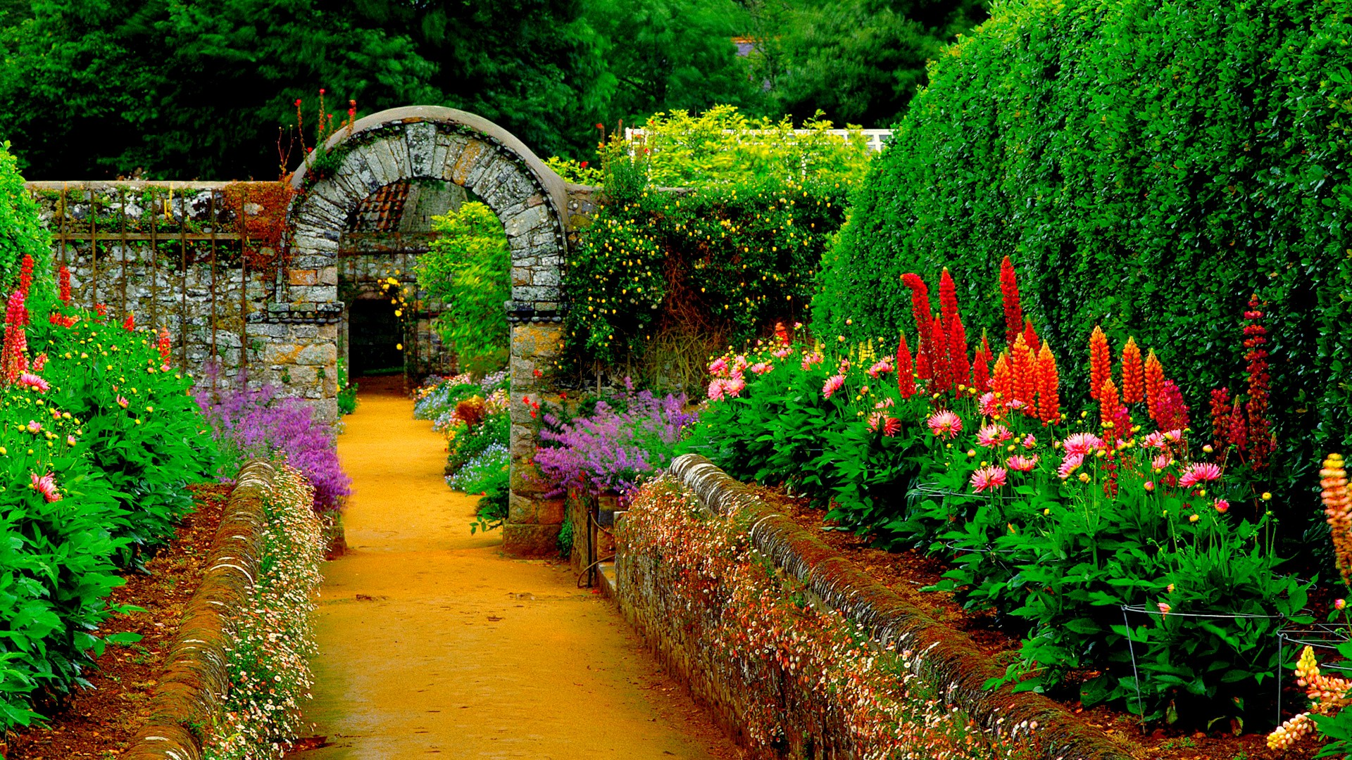 Hd wallpaper garden - Hd Wallpaper Garden 18