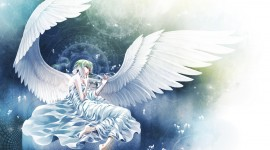 Angel for smartphone