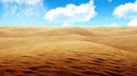 Desert Pics