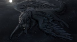 Black Wolf Images