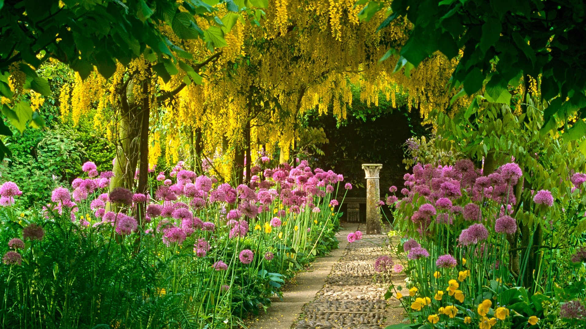 Garden Wallpapers High Quality Download