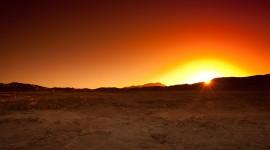 Desert free