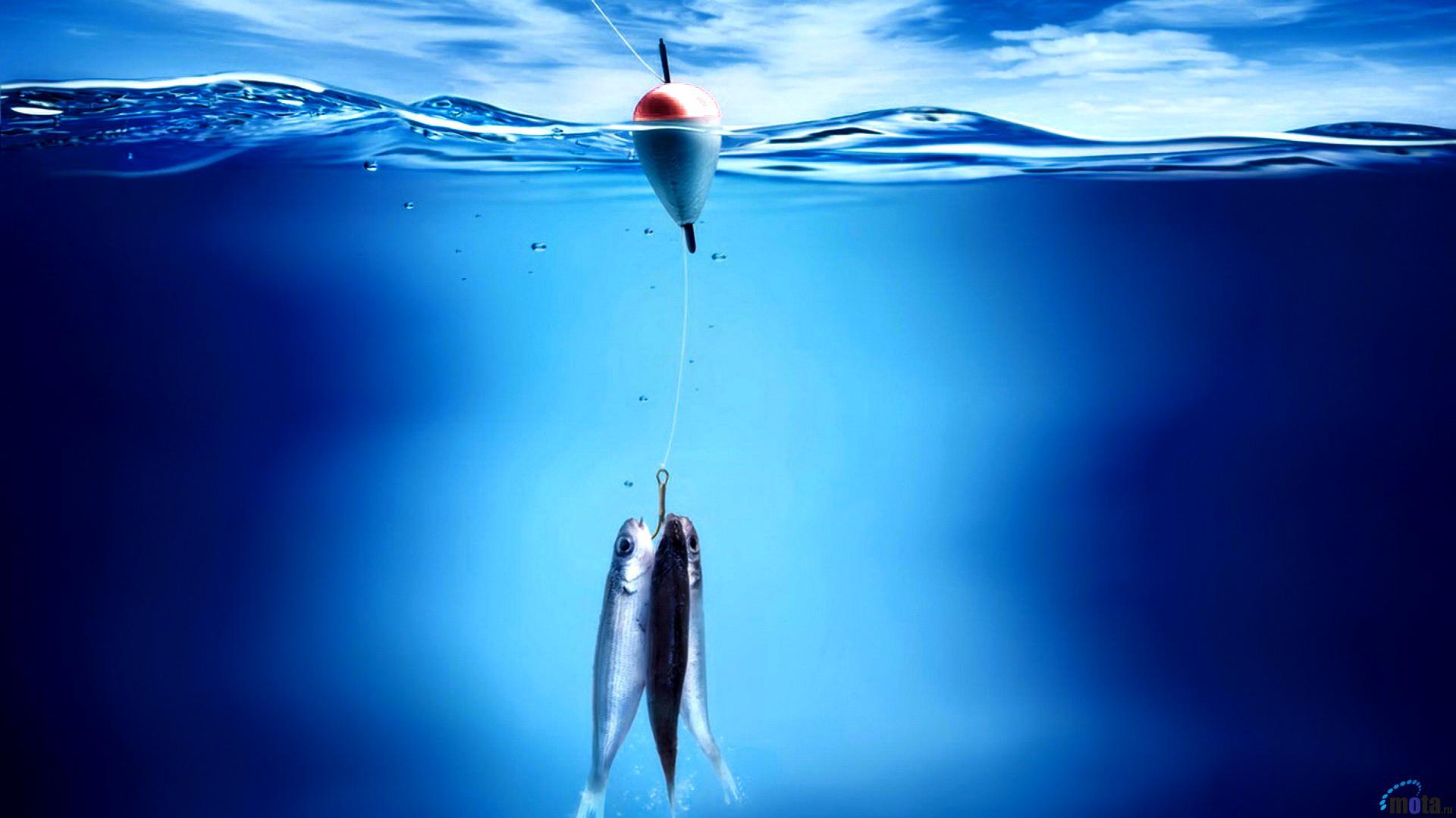 прикольные картинки высокого разрешения на тему рыбалка