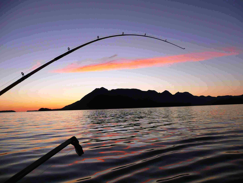 Sport fishing wallpaper