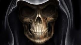 Skull High resolution