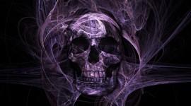 Skull High Definition