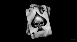 Skull Wide wallpaper