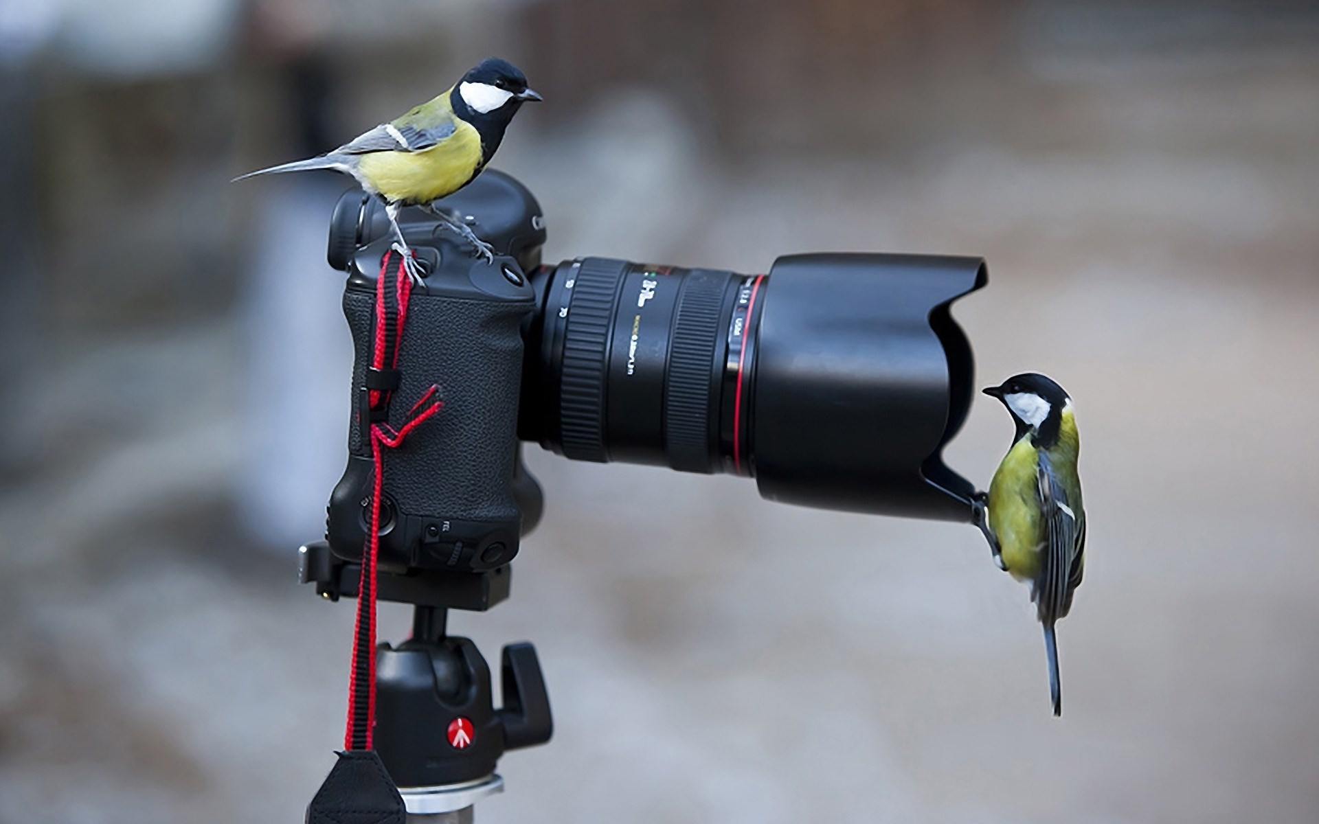 Camera Wallpapers High Quality Download Free