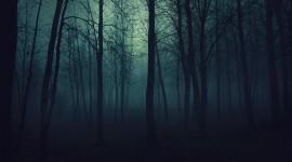 Gloomy Images