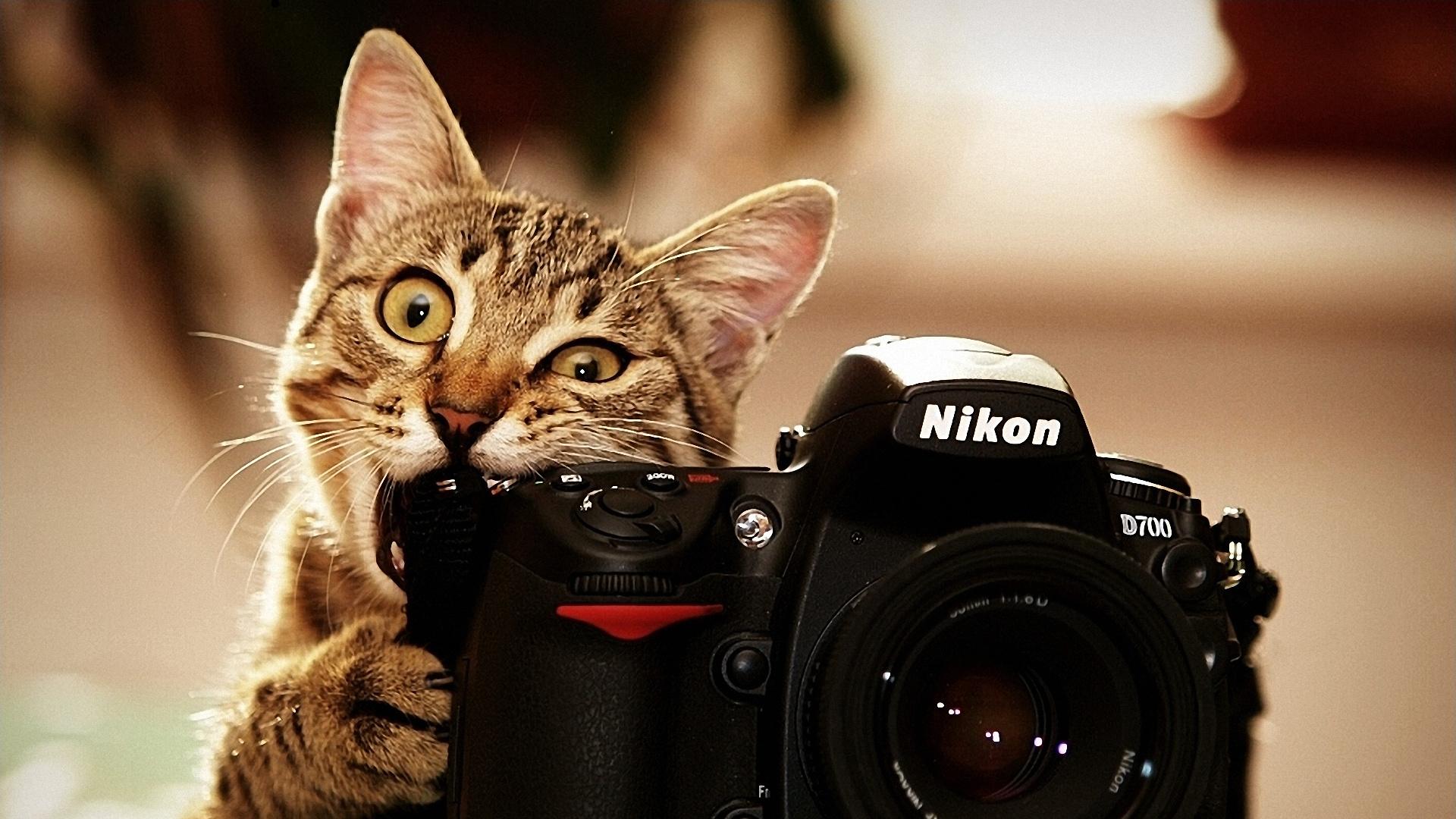 Hd wallpaper camera - Camera Wallpapers