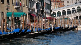 Venice Android #681