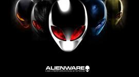 Alienware Pic #946