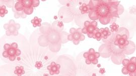 Pink Flower Pics #551
