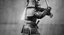 Samurai Image #195