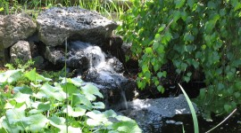 Pond hd pictures #105