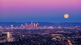 Los Angeles 2015 #521
