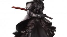 Samurai for PC #730