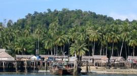 Island free #980