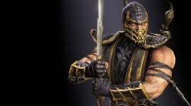Scorpion High Resolution #161
