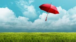 Umbrella Wallpaper Full HD