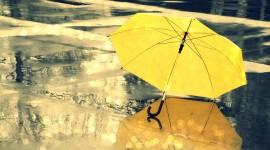 Umbrella Wallpapers High resolution