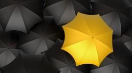 Umbrella Wallpaper For PC