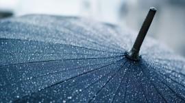 Umbrella Wallpapers HQ