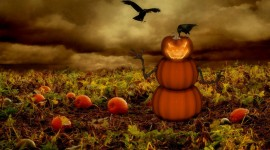 Halloween Wallpapers For PC