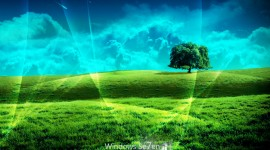 Windows Wallpaper Download