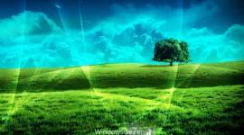 Windows Wallpaper Download