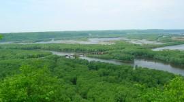 River Mississippi  Wallpaper For The Smartphone
