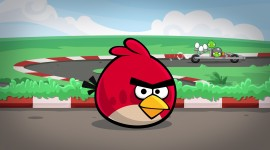 Angry Birds Best Wallpaper