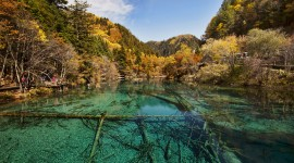 Jiuzhai Valley National Park paper Download