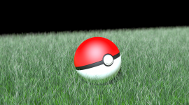 Pokeball Photo