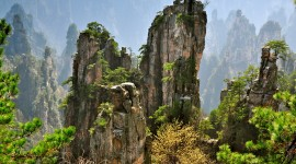 Tianzi Mountain Image