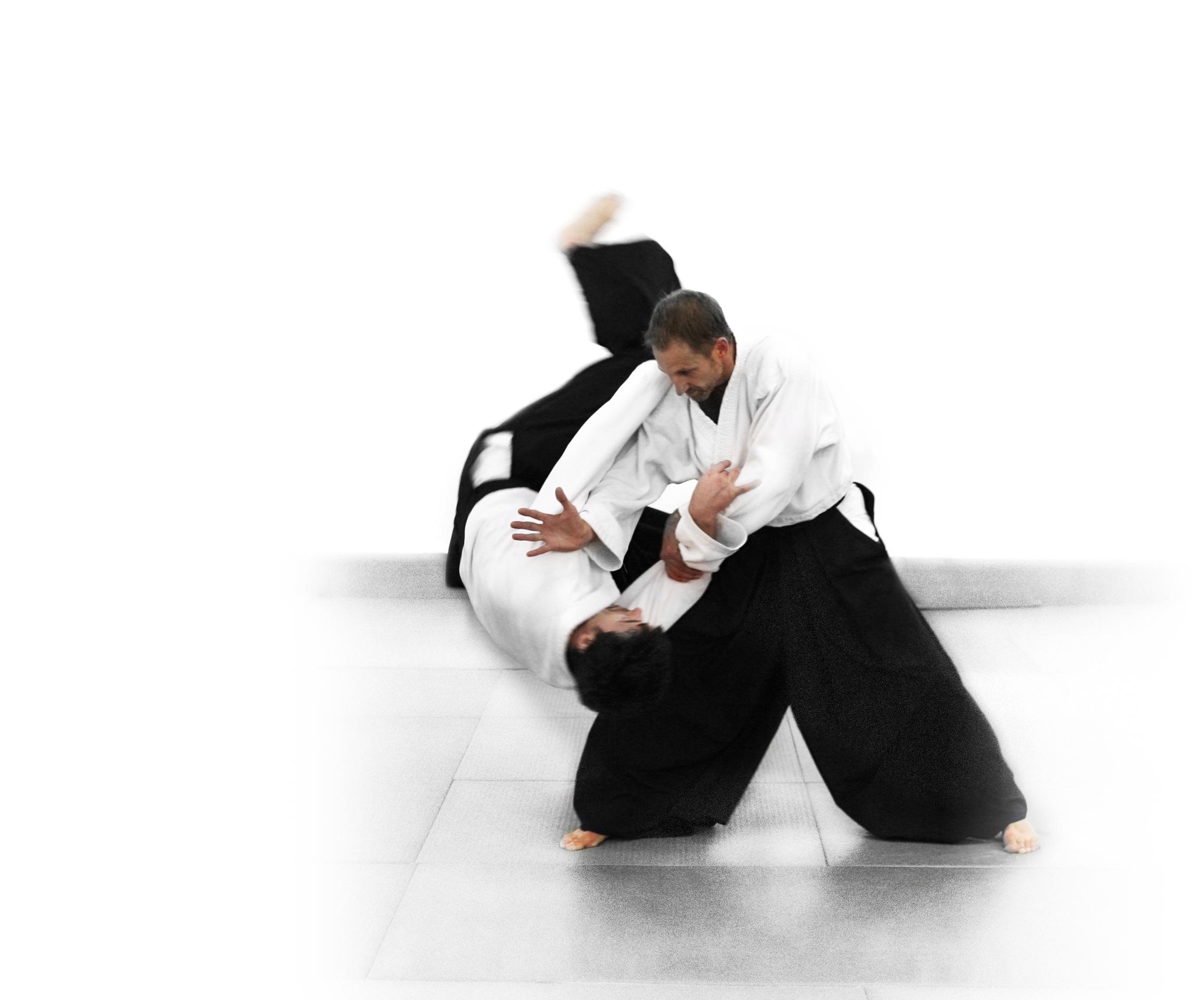 Aikido Best Wallpaper
