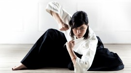 Aikido Wallpaper For Desktop