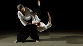 Aikido Desktop Wallpaper Free