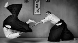 Aikido Desktop Background