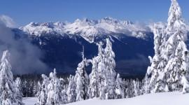 4K Snow Image