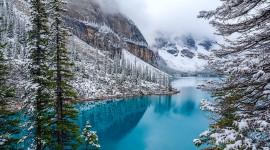 4K Snow Pics